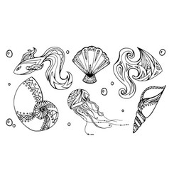set of outline seashells fish and jellyfish vector image