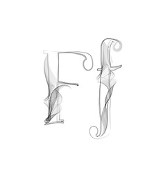 Smoke or Haze Letter Font Type two letters vector