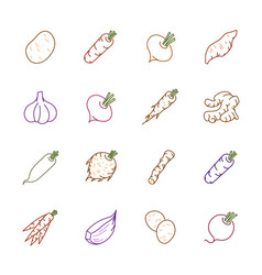 Vegetables icons - potato carrot and garlic vector