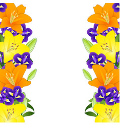 Yellow orange lily and blue iris flower border on vector