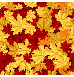 Maple leafs seamless pattern vector image