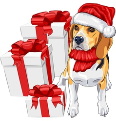Dog beagle in the red hat of santa claus vector