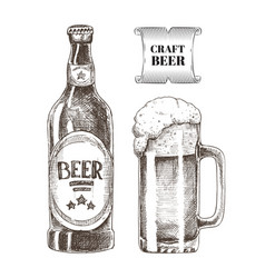 Craft beer bottle and glass vector