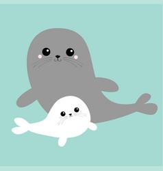 sea lion harp seal pup set cute cartoon kawaii vector image