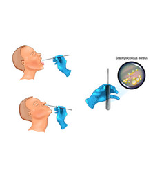 throat and nose swab vector image