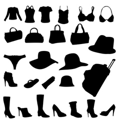 woman accessory vector image vector image