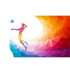 Color silhouette of volleyball player on attack vector image vector image