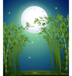 A bamboo forest under the bright fullmoon vector image