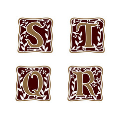 decoration letter s t r q logo design concept vector image
