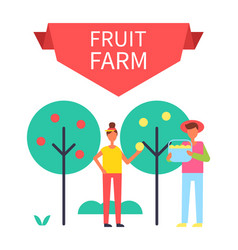 fruit farm poster harvesting vector image