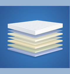 Layered orthopedic mattress with 7 sections vector