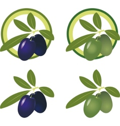 olives icon vector image