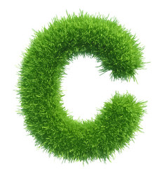 small grass letter c on white background vector image