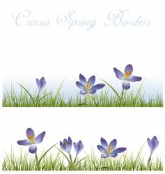 crocus borders vector image