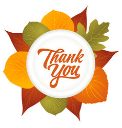 thank you hand lettering with leaves decoration vector image