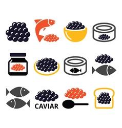 Caviar roe fish eggs icons set vector image