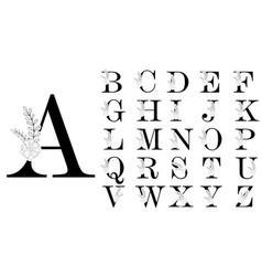 alphabet line floral decoration letters logo vector image