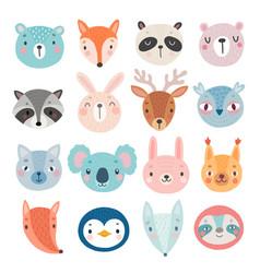 cute woodland characters bear fox raccoon vector image