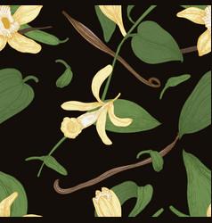 elegant natural seamless pattern with vanilla vector image vector image
