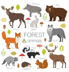 forest animals isolated set moose wild vector image
