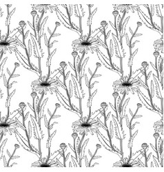 hand drawn medical plant sketch seamless pattern vector image