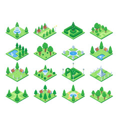 Isometric green park or garden trees fountain and vector