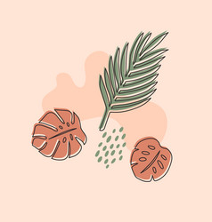 layouts with hand-drawn tropical shapes and vector image