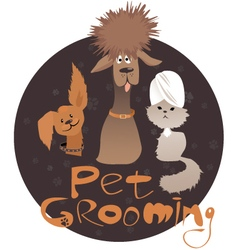pet grooming vector image