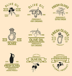 set of olive oil emblems design element for logo vector image