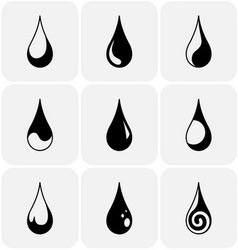 set water drops different kind vector image