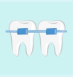 teeth braces in flat style vector image