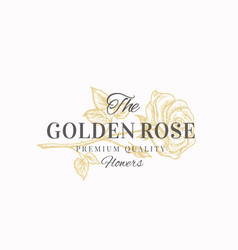 the golden rose premium quality flowers abstract vector image