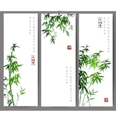 Three banners with green bamboo trees vector image vector image