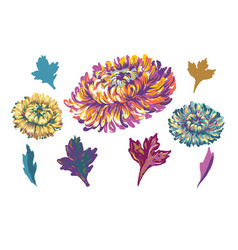 embroidery design collection of floral elements vector image