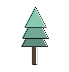 isolated pine tree design vector image