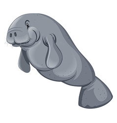 Sea walrus on white backgorund vector image