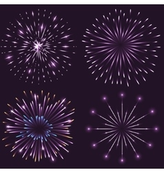 Set of festive sparkling fireworks vector