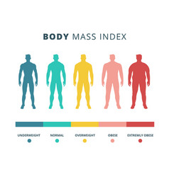 Body mass index colorful flat vector