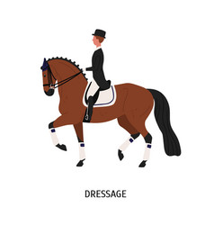 Dressage horse riding flat vector