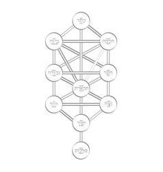 Icon with tree of life kabbalah symbol vector