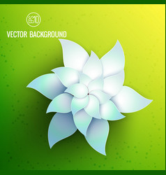 natural floral bright flower template vector image