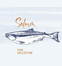 Salmon fish brush for logo vector