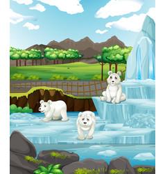 Scene with polar bears on ice vector