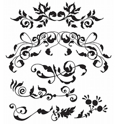 Set decorative floral elements vector