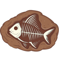 underground fish fossil vector image