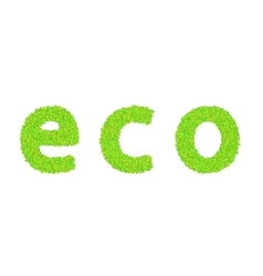 word eco with leaves on a white vector image