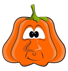 cartoon pumpkin EPS10 vector image vector image