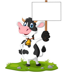 cartoon funny cow holding blank sign vector image