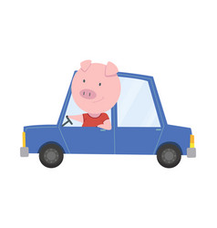 Colored kids transport with cute little pig or hog vector