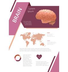 Internal human organs infographic brain vector